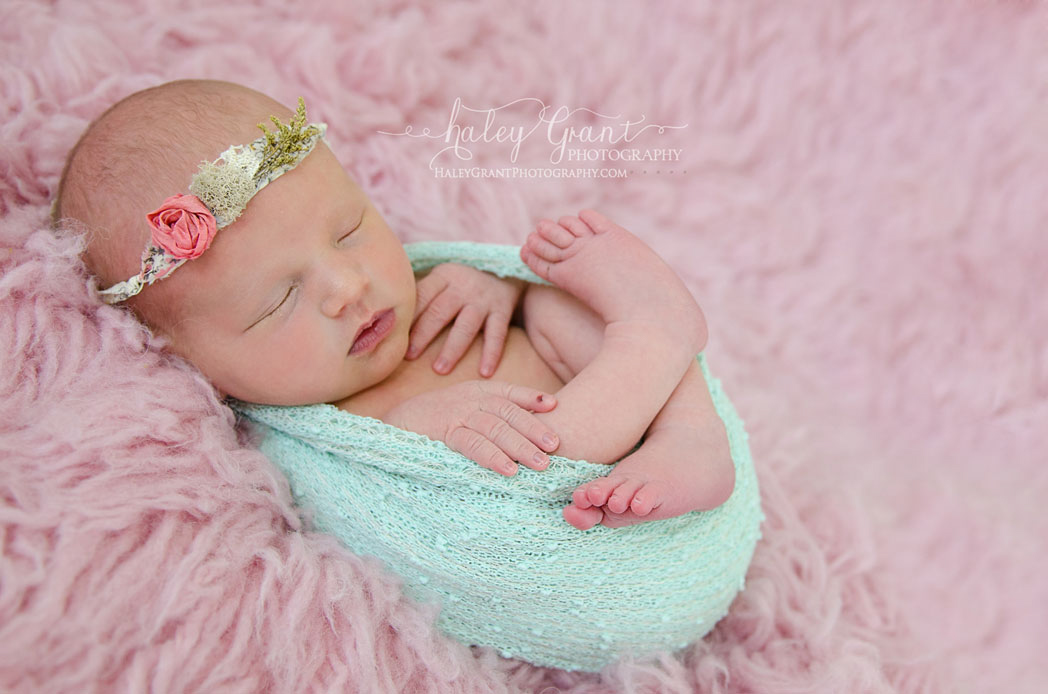 Haley grant photography newborn photographer austin texas and cedar park