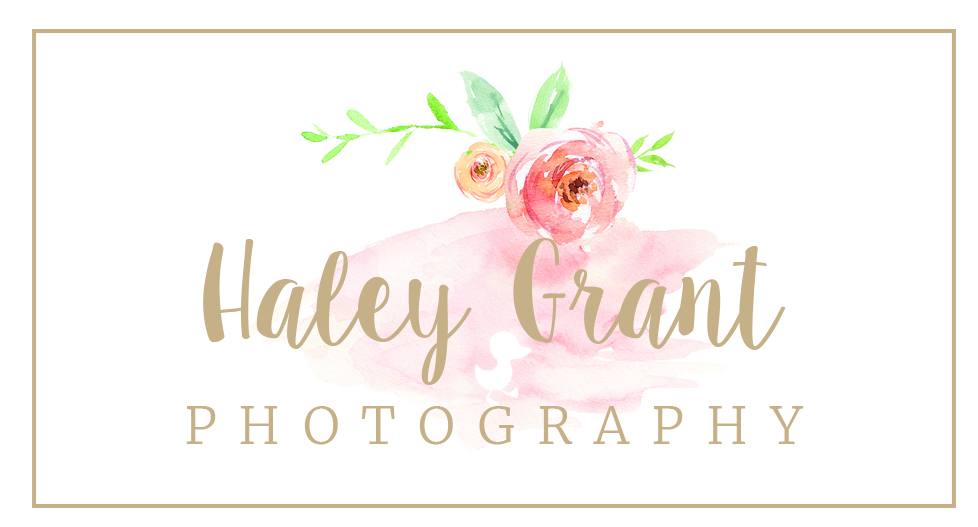 Austin Newborn Photographer